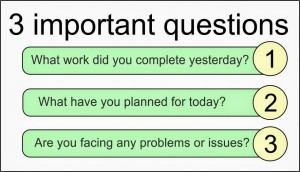 (5)Daily scrum meeting 3 questions